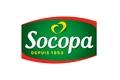 Coach orientation scolaire Socopa